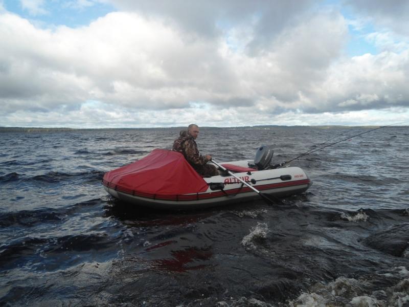 моторная лодка pro-360